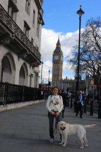 Лондон, март 2017