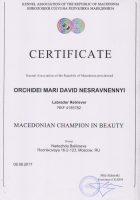 Сертификат Чемпиона Македонии