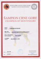 Чемпион Черногории